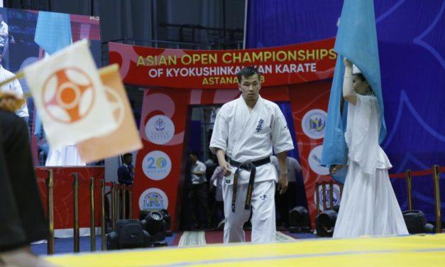 Небольшой видео обзор с Открытого чемпионата Азии по киокушинкай-кан каратэ — a short video review From the open Asian championship Kyokushinkai-Kan karate