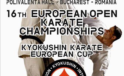 Пульки абсолютного чемпионата и кубка Европы по киокушин карате (IKO) — обновление