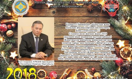 Новогоднее видео поздравление президента РНФКК